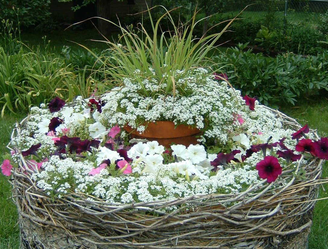 Tree Stump Flower Bed
