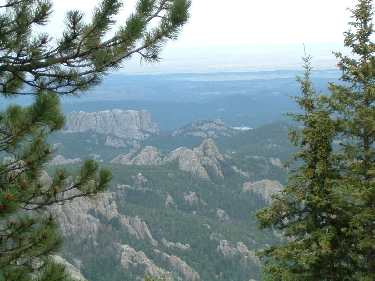 The Black Hills (Paha Sapa) Of South Dakota